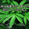 麻薬と大麻の違いを知らずに混同して発信している日本人が多すぎる